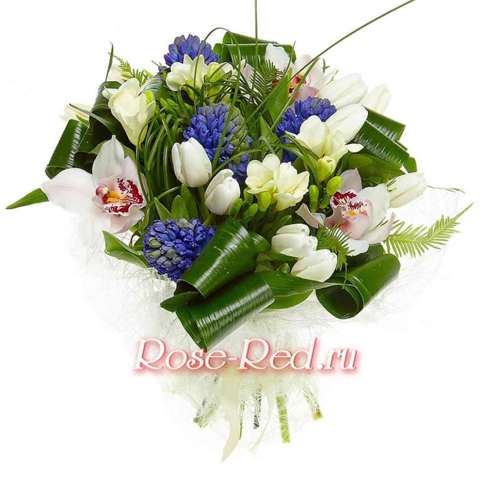Где купить цветы в кисловодске где заказать букет в коломне