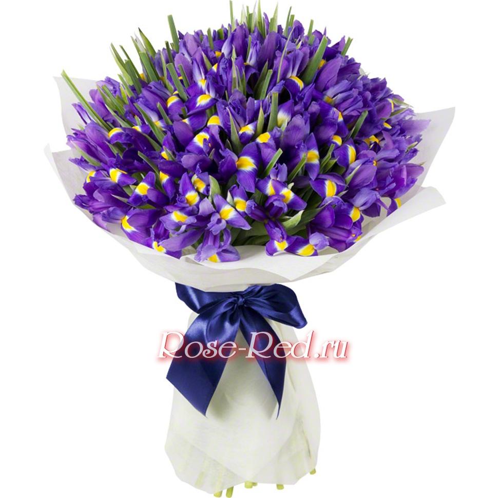 Дарить цветы в кисловодске